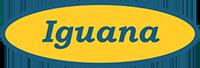 Mini Zoo Iguana